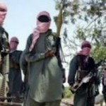 Boko Haram kills Borno monarch, 19 others in fresh attacks
