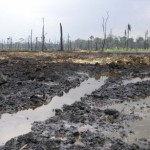 Agip oil well leaks dangerous gaseous elements in Bayelsa community