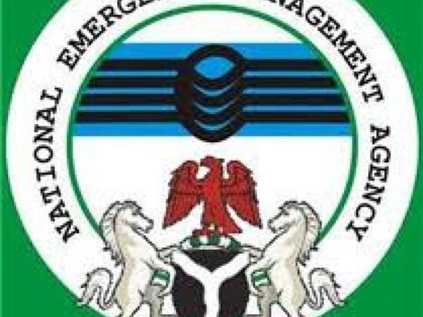 Image result for NEMA nigeria