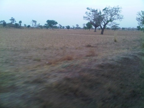 Country Side kano trip