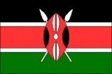 Vote count begins in Kenyan presidential election