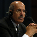 UPDATED: Appointment of ElBaradei, Egyptian Nobelist, Looking Unlikely