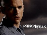 Prison break star, Scofield, declares he's gay