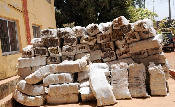 Image result for ndlea drugs