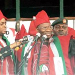 We are not party to President Jonathan's endorsement – Afenifere group
