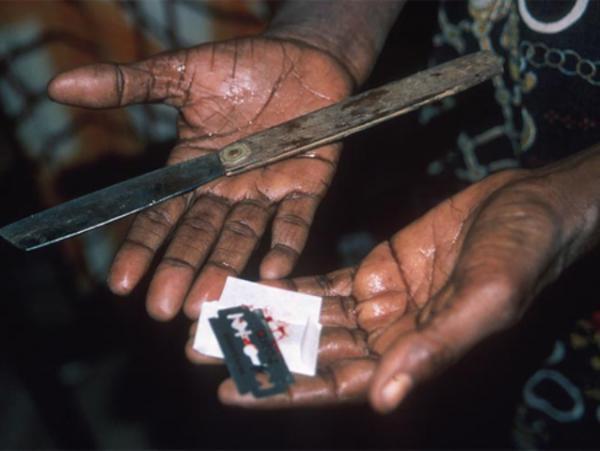 essay on female genital mutilation   dako group