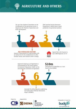 Buharimeter Infographics 8