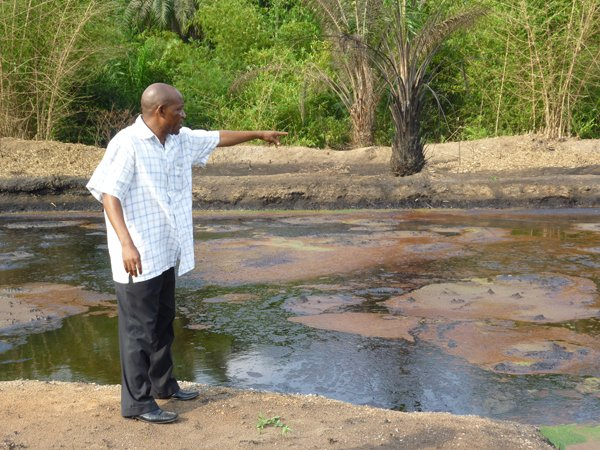Ogoni environment has been terribly polluted by oil exploration activities