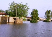 submerged-houses-in-jimeta